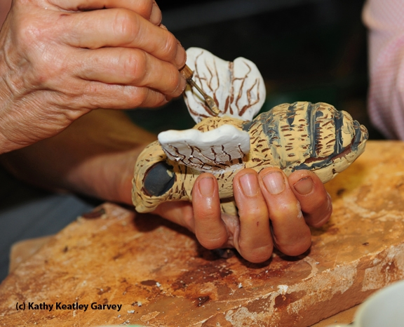 Wings receive special treatment. (Photo by Kathy Keatley Garvey)