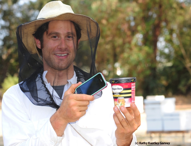 Beekeeper Billy Synk, manager of the Harry H. Laidlaw Jr. Honey Bee Research Facility, demonstrates the Haagen-Dazs Concerto Timer with a cell phone and ice cream carton. (Photo by Kathy Keatley Garvey)