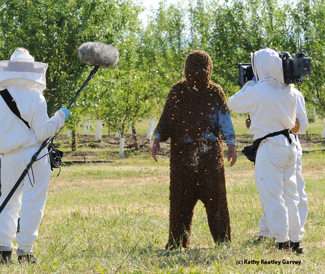 A documentary crew prepares to film Norm Gary. (Photo by Kathy Keatley Garvey)