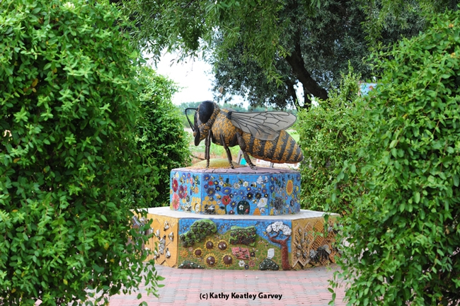 This is Miss Bee Haven, art work by Donna Billick. (Photo by Kathy Keatley Garvey)