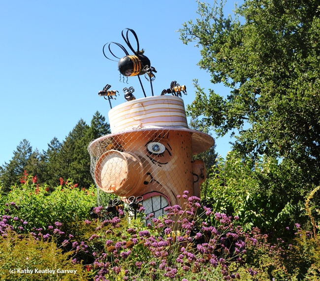 A sculpture of Bernard the Beekeeper graces the entrance to Melissa's Garden, Healdsburg. (Photo by Kathy Keatley Garvey)