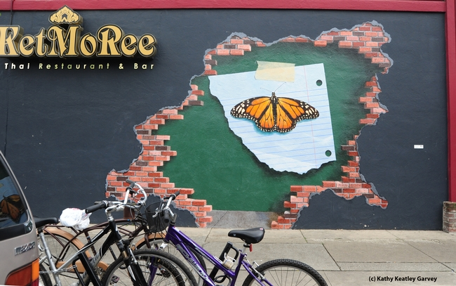 The mural from a distance. (Photo by Kathy Keatley Garvey)