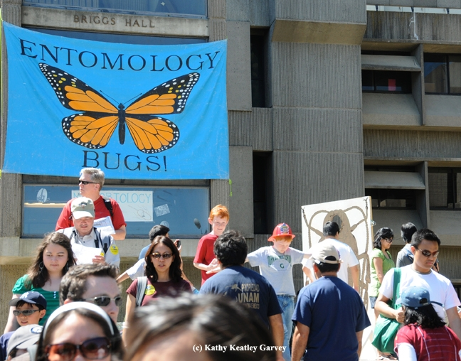 Briggs Hall beckons with bugs on UC Davis Picnic Day. (Photo by Kathy Keatley Garvey)