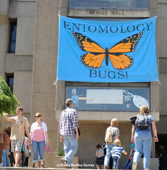 Briggs Hall will be busy on Saturday, April 12 during the annual campuswide UC Davis Picnic Day. (Photo by Kathy Keatley Garvey)