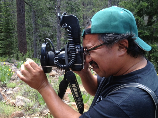 Eddie Dunbar, founder and president of the Insect Sciences Museum of California, photographs insects.