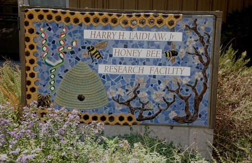 SIGN in front of the Harry H. Laidlaw Jr. Honey Bee Research Facility at UC Davis honors the legendary geneticist. The ceramic sculpture at the site (sign and walls) is the work of Davis artist Donna Billick and entomologist-artist Diane Ullman. (Photo by Kathy Keatley Garvey)