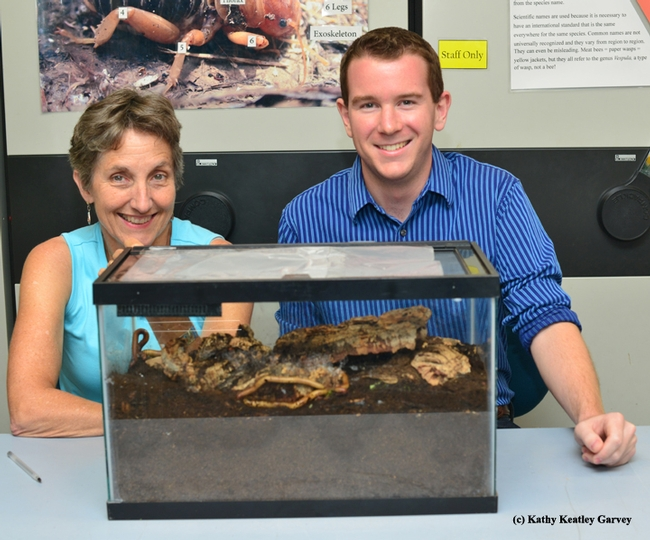 Lynn Kimsey, director of the Bohart Museum of Entomology, and millipede enthusiast Evan White, both of UC Davis,