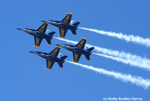 Blue Angels maneuvering their Hornets into a diamond formation. (Photo by Kathy Keatley Garvey)