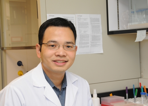 MALARIA RESEARCHER Win Surachetpong in the Shirley Luckhart lab at UC Davis. (Photo by Kathy Keatley Garvey)