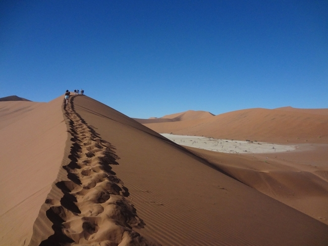 The world's second highest sand dune (Sossusvlei's Big Daddy). (Photo by Patty Carey)
