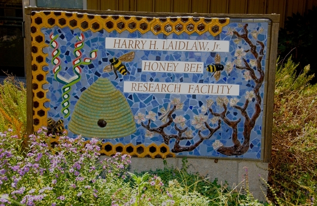 The sign that fronts the Harry H. Laidlaw Jr. Honey Bee Research Facility is the mosaic-ceramic work of Davis artist Donna Billick. (Photo by Kathy Keatley Garvey)