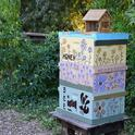 A viable bee hive is a new addition in the bee garden, which was planted in the fall of 2009.(Photo by Kathy Keatley Garvey)