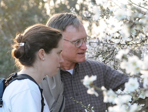 Examining Almond Blossoms