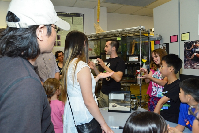 Enthusiastic about all arthropods, UC Davis entomology undergraduate student Wade Spencer (center, in black shirt) draws a crowd at a recent Bohart Museum of Entomology open house. (Photo by Kathy Keatley Garvey)