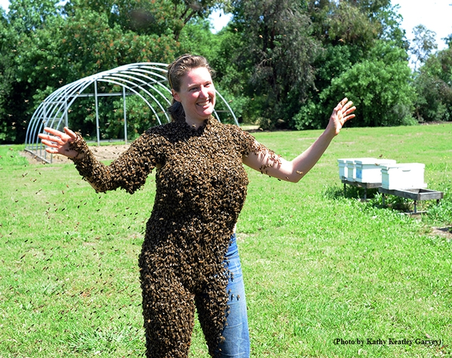 Bee-covered Elizabeth Frost in a lighter moment at the Harry H. Laidlaw Jr. Honey Bee Research Facility. (Photo by Kathy Keatley Garvey)