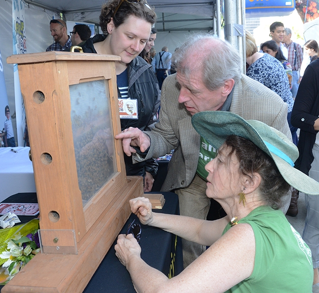 Beekeepers Paul Hansbury and his wife, Susan (kneeling) of Laytonville, Mendocino County, Calif. look at the bees with Extension apiculturist Elina Niño. The Hansburys, wearing