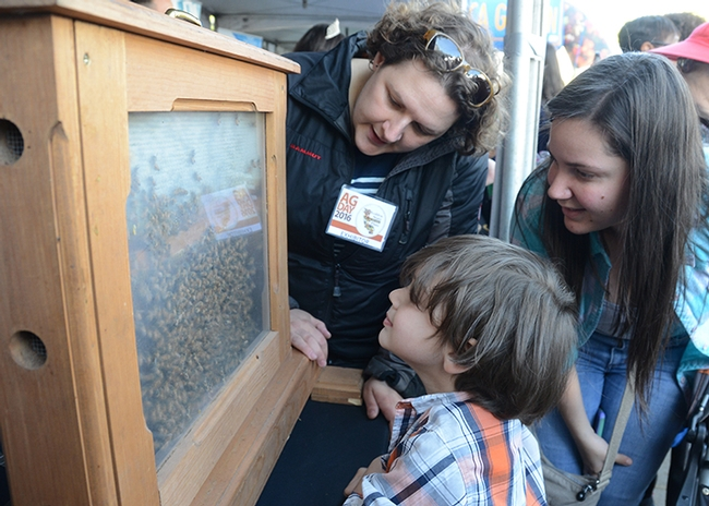 Four-year-old Michael Ramos-Rivera of Elk Grove gets his first close-up look at bees. With him are Extension apiculturist Elina Niño (far left) and his mother, Sharill Rivera. (Photo by Kathy Keatley Garvey)