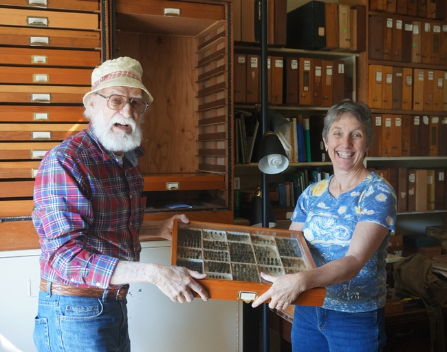David Verity of Los Angeles gifting his collection of buprestid jewel beetles to Bohart Museum director Lynn Kimsey.