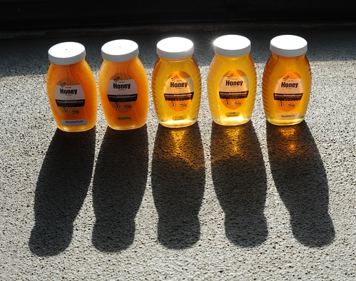 END PRODUCT: Jars of honey. Visitors to UC Davis Picnic Day at Briggs Hall can sample these flavors, orange blossom, eucalyptus, raspberry, meadowfoam and starthistle,  plus cotton. (Photo by Kathy Keatley Garvey)