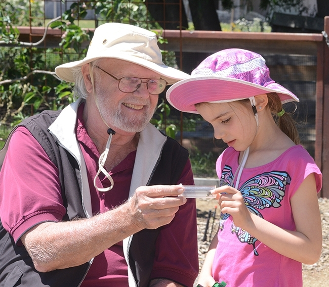 Native pollinator specialist Robbin Thorp, distinguished emeritus professor of entomology, shows a bee to haven visitor Lalibella Eaves, 6, of Quebec City, Canada. Her mother,  Valerie Fournier, received her doctorate in entomology from UC Davis in 2003 and is now a professor at Laval University, Quebec City. (Photo by Kathy Keatley Garvey) for Bug Squad Blog