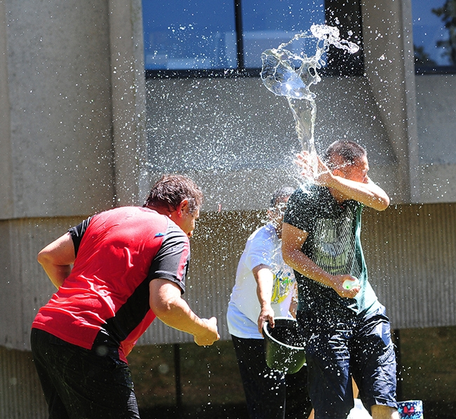 Ting Xu (far right), a visiting professor from China, gets splashed. At left is Hammock lab research scientist Christopher Morisseau. Associate professor Aldrin Gomes is in the background. (Photo by Kathy Keatley Garvey)