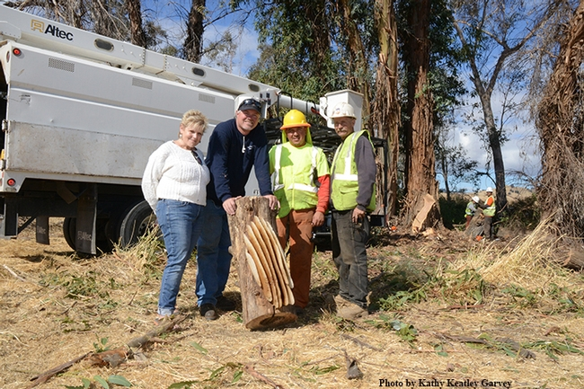 Showcasing the collapsed feral honey bee colony are (from left) Karen Cometta Shepard of Vacaville; Robert Arndt of the Nut Tree Airport; and Jose Garcia and Dennis Stark of the Atlas Tree and Landscape Company. (Photo by Kathy Keatley Garvey)