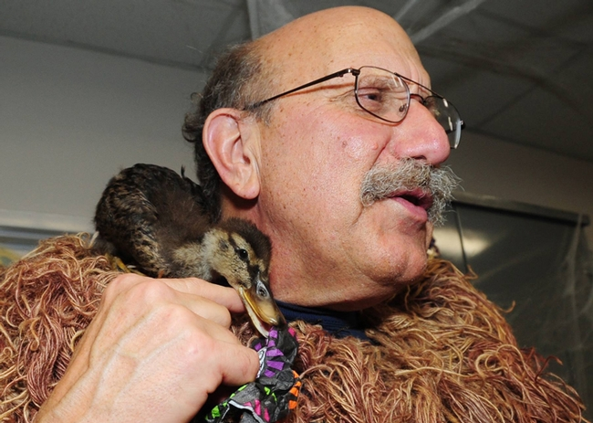 Forensic entomologist Robert Kimsey in his ghillie suit with his newfound friend, Quack. (Photo by Kathy Keatley Garvey)