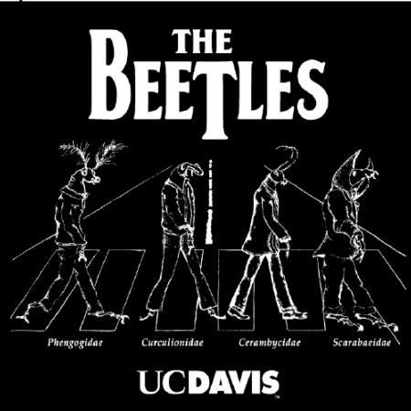 The Beetles, a take-off of the Beatles crossing Abbey Road, is one of the best sellers.