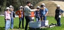 Charley Nye (center) teaching a beekeeping course at the Harry H. Laidlaw Jr. Honey Bee Research Facility, UC Davis. (Photo by Kathy Keatley Garvey) for Bug Squad Blog