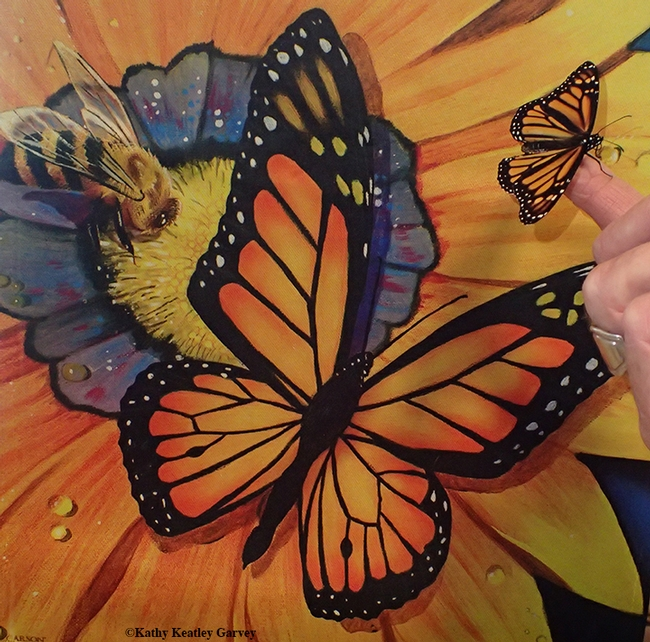 A female monarch that eclosed on Jan. 5 perches on a finger, next to a garden flag depicting a male monarch and a worker honey bee. (Photo by Kathy Keatley Garvey)