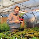 UC Davis agricultural entomologist Christian Nansen in his greenhouse. (Photo by Kathy Keatley Garvey)