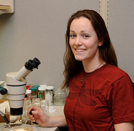 Danielle Wishon, forensic investigator for the Sacramento Police Department, started her colony of bed bugs while studying for her bachelor's degree in entomology at UC Davis. (Photo by Kathy Keatley Garvey)