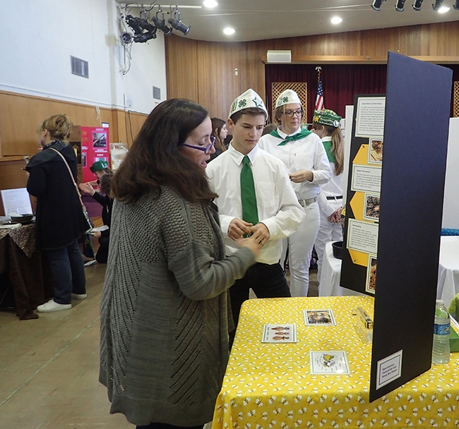 Tremont 4-H Club member Ryan Anenson, a new beekeeper, answers questions from evaluator Barbara Forbes of the Suisun Valley 4-H Club at the Solano County 4-H Project Skills Day. (Photo by Kathy Keatley Garvey)