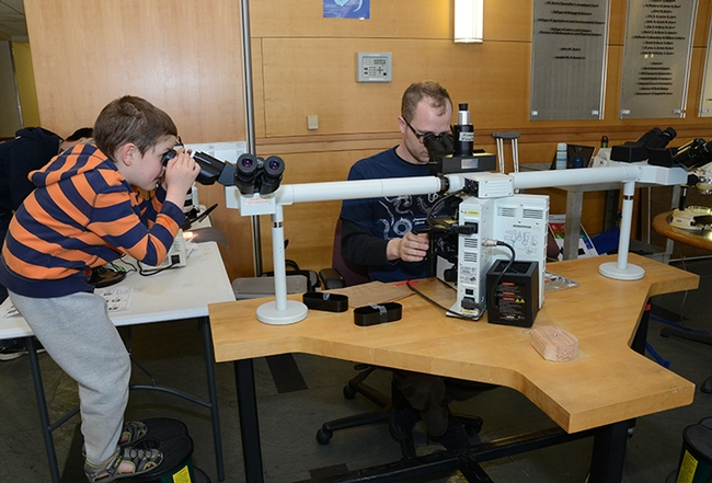 UC Davis graduate student and nematologist Corwin Parker looks through a microscope while a young visitor does the same. (Photo by Kathy Keatley Garvey)