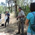 Bohart Museum associate Greg Kareofelas talks to butterfly enthusiasts on a Placer Land and Trust tour looking for the California dogface butterfly, the state insect. (Photo by Kathy Keatley Garvey)