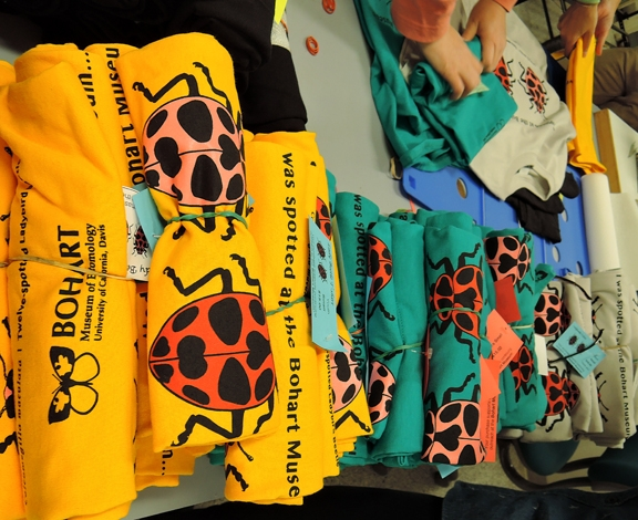 Seeing spots--scores of t-shirts are lined up, ready to be placed in the gift shop. (Photo by Kathy Keatley Garvey)