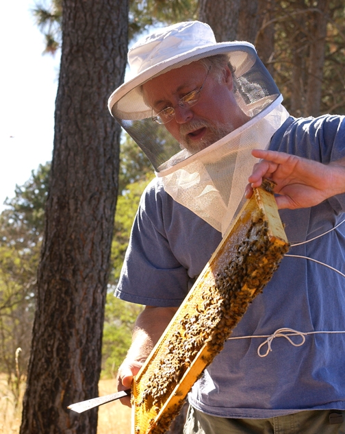 Apiculturist Steve Sheppard of Washington State University is the keynote speaker at the UC Davis Bee Symposium. (WSU Photo)