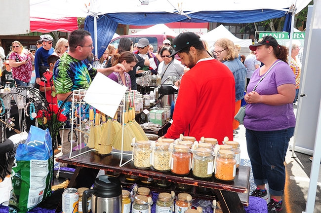 Some 20,000 attended the inaugural California Honey Festival. (Photo by Kathy Keatley Garvey)