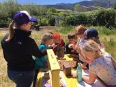 This is a scene from one of the Bee Girl programs in southern Oregon. (Photo courtesy of Sarah Red-Laird)