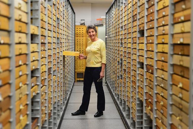 Lynn Kimsey, a professor of entomology at UC Davis, directs the Bohart Museum of Entomology. (Photo by Kathy Keatley Garvey)