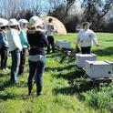 Extension apiculturist Elina Lastro Niño conducts a beekeeping course. (Photo by Kathy Keatley Garvey)