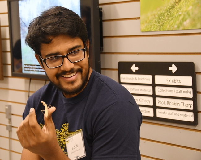 "UC Davis entomology major  Lohitashwa ""Lohit"" Garikipati showed his praying mantises at a  Bohart Museum open house last September. He will be showing his collection on Saturday, Feb. 17 during the UC Davis Biodiversity Museum Day. (Photo by Kathy Keatley Garvey)"