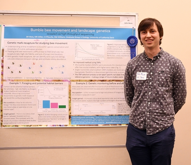 UC Davis doctoral student John Mola won the Graduate Student Research Poster Competition at the UC Davis Bee Symposium with his work on bumble bees. (Photo by Kathy Keatley Garvey)