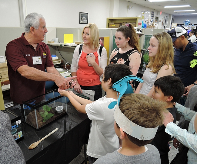 Entomologist and Bohart associate Jeff Smith introduces a crowd to Snuggles, a rose-haired tarantula. (Photo by Kathy Keatley Garvey)