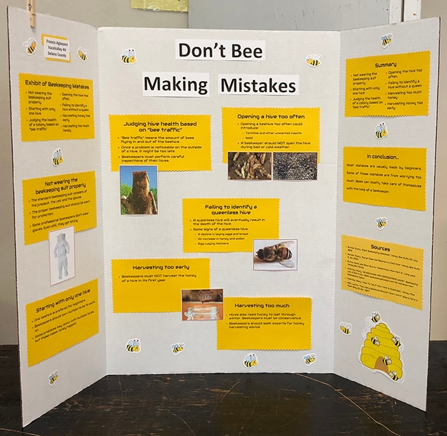 Beekeeper Francis Agbayani, 12, of the Vaca Valley 4-H Club, Vacavile, is displaying his 4-H project,