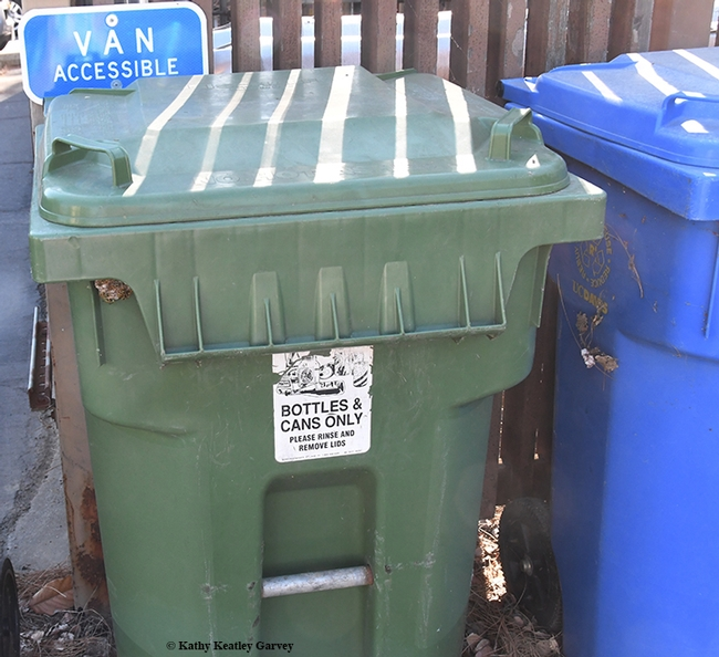 A sign on a UC Davis recycling bin clearly says