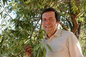 Frank Zalom, distinguished professor of entomology at UC Davis (shown here in an almond orchard) is the newly selected editor-in-chief of the Journal of Economic Entomology. (Photo by Kathy Keatley Garvey)