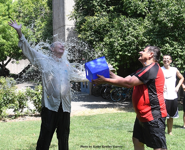 Gotcha! Hammock lab researcher Christopher Morisseau (right), who coordinates the annual Bruce Hammock Lab Water Balloon Battle, scores a direct hit! Bruce Hammock smiles. (Photo by Kathy Keatley Garvey)