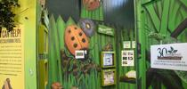 The California State Fair's Insect Pavilion lauded the Bohart Museum of Entomology for donating insect specimens. (Photo by Kathy Keatley Garvey) for Bug Squad Blog