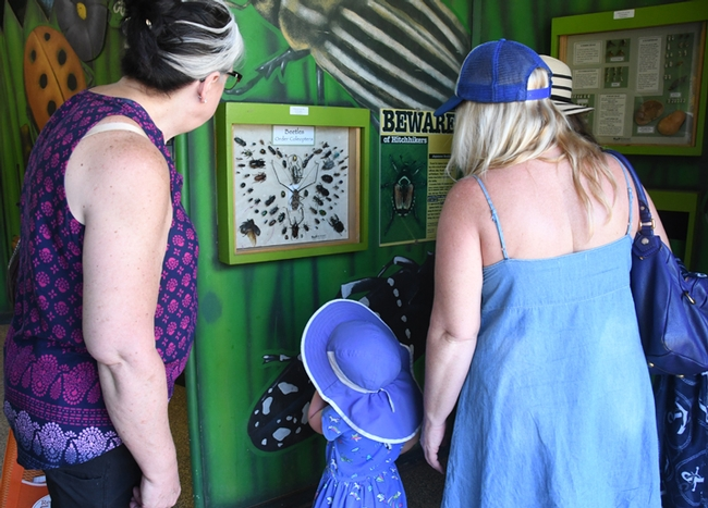 This trio checks out the pests displayed below a sign in the Insect Pavilion that cautions: